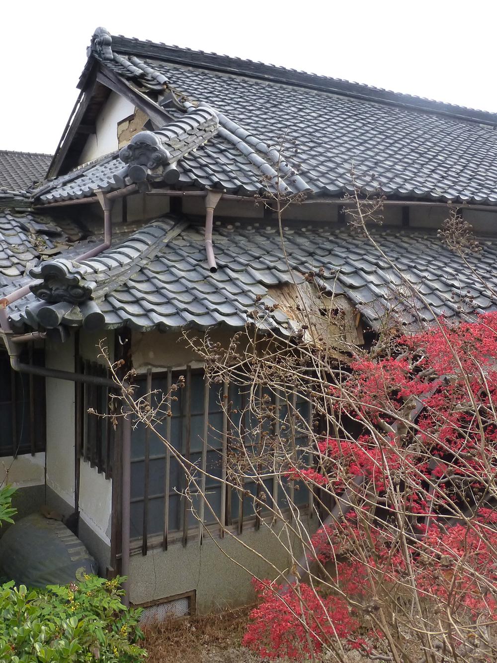 Tsuyama-walk6-decay.jpg