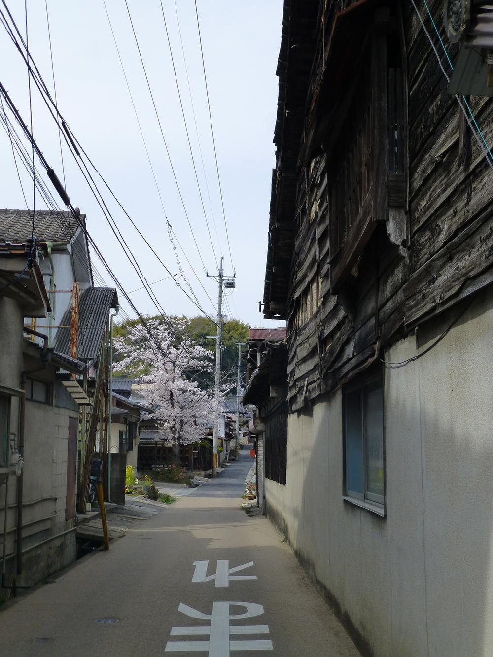 Tsuyama-walk7.jpg