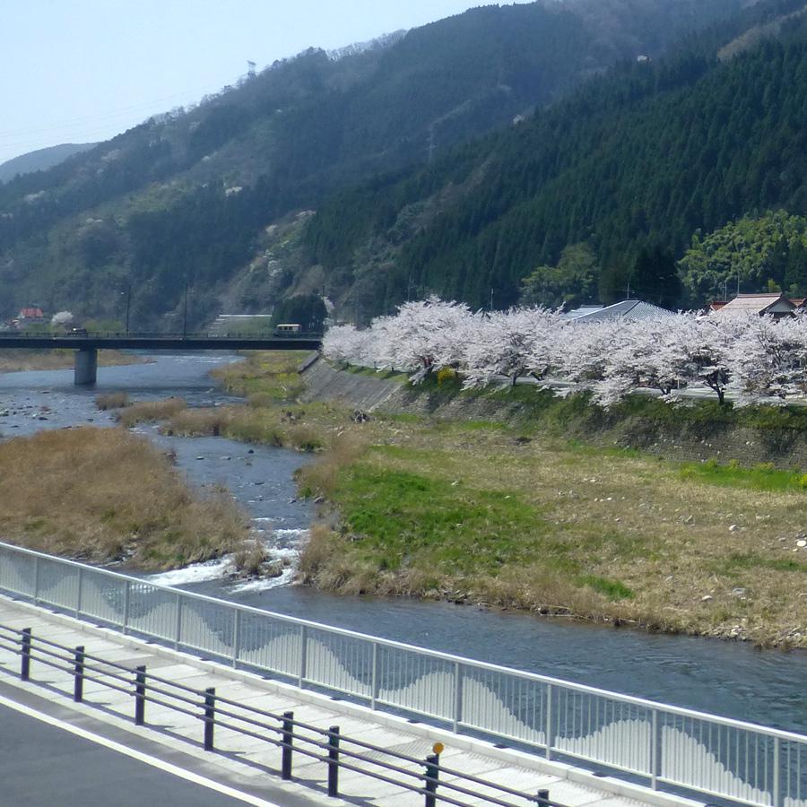 Train-Tsuyama-Shinji-7o.jpg
