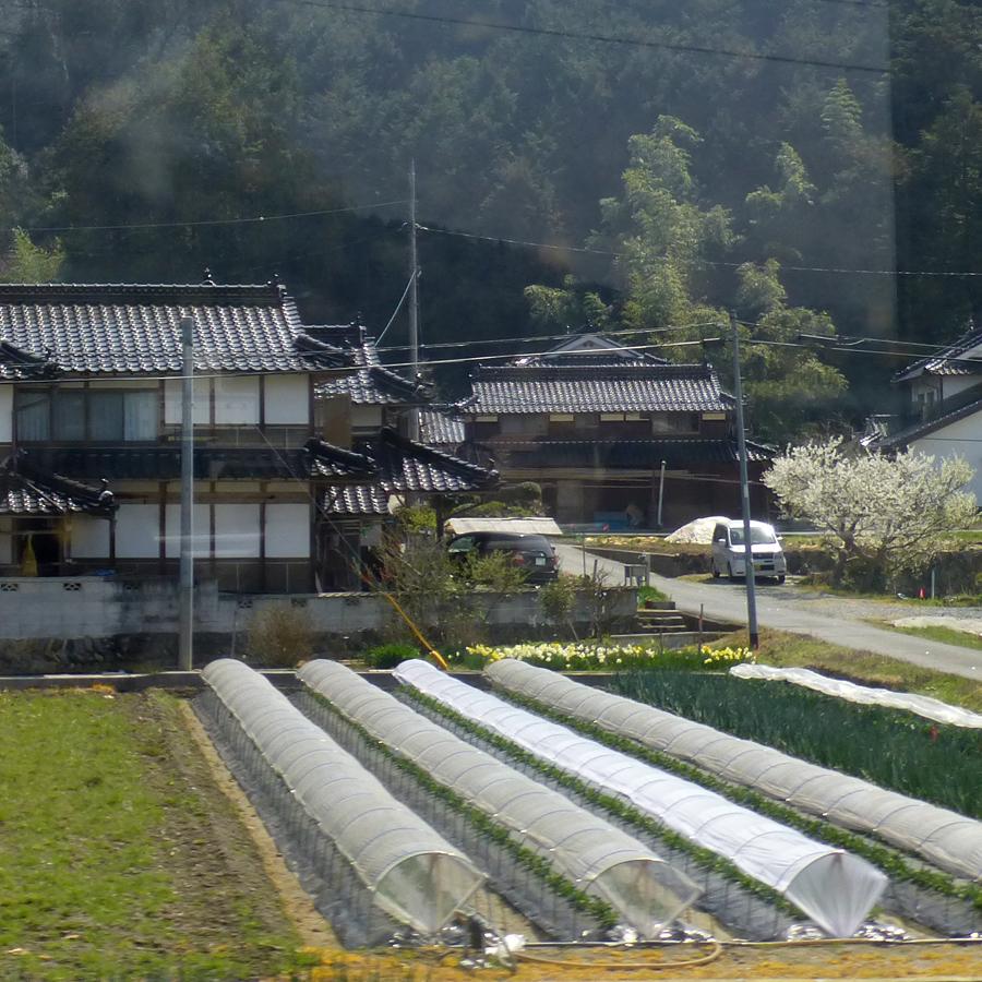 Train-Tsuyama-Shinji-7h.jpg
