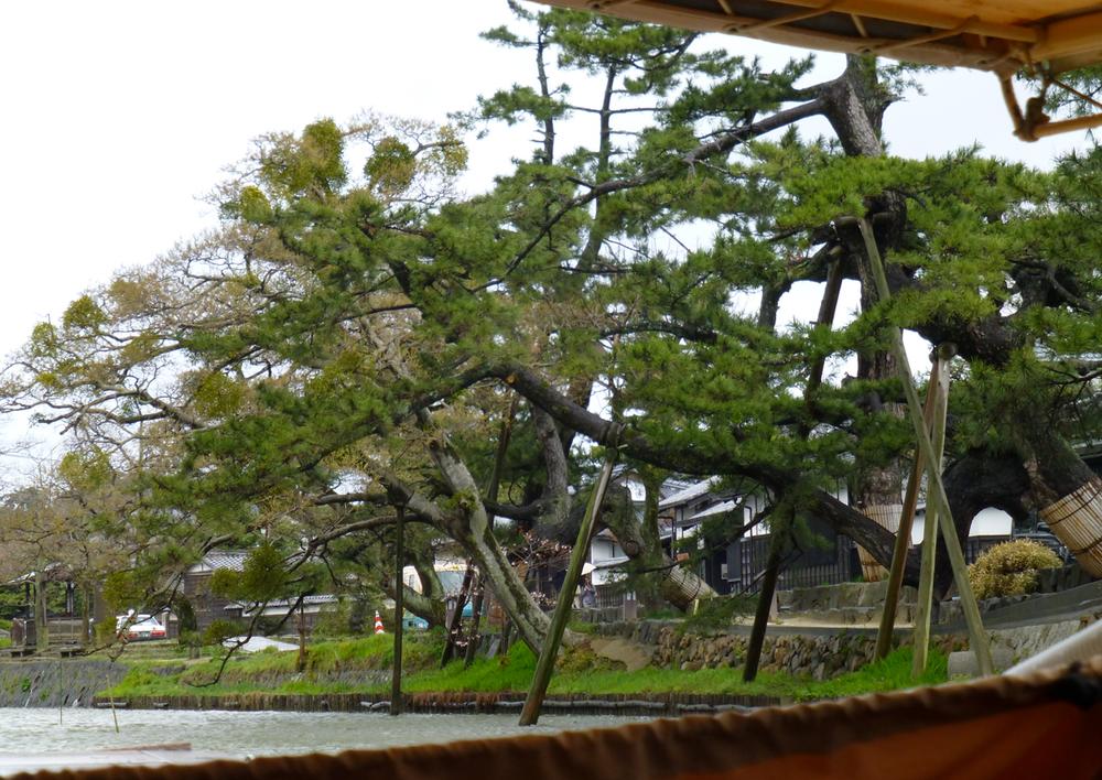 Matsue-canal11.jpg