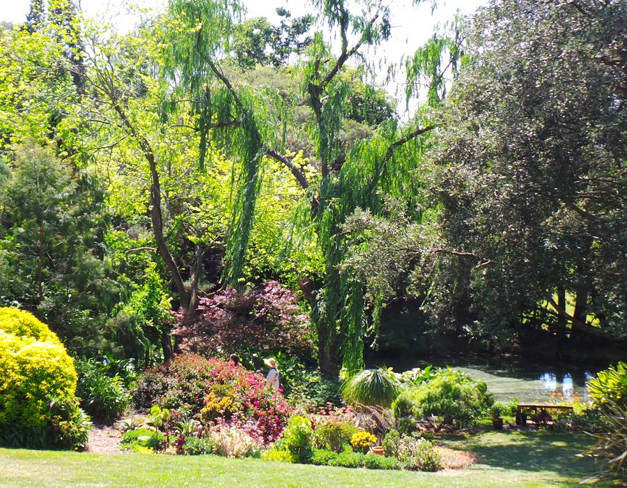 Elegans Garden