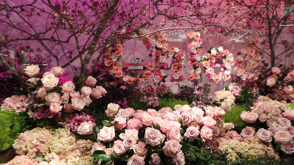 Cherry blossoms and a field of roses make for a classic feminine scene celebrating Chloe's Perfume.