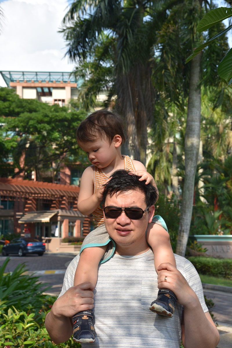 When your two this is the best way to get around town... on Dada's shoulders!