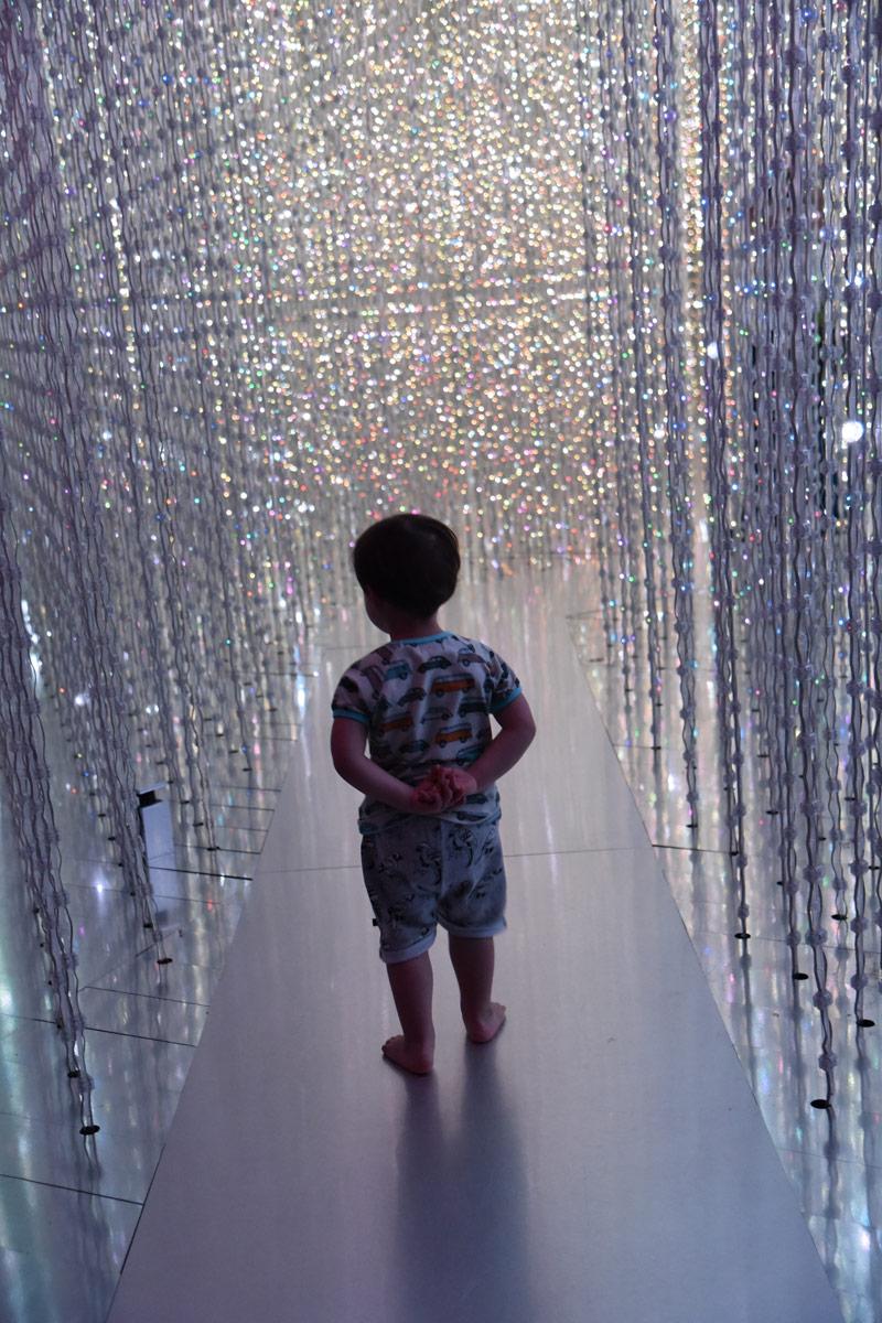 The glittering LED crystal light walk entrances.