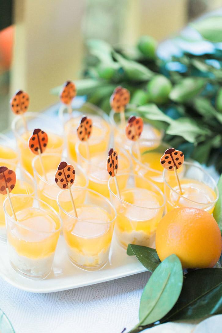 citrus-orange-garden-jelly-ladybird-cupcaketoppers.jpg