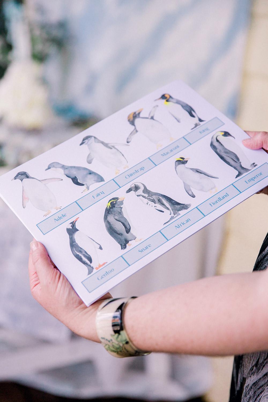 penguin-bingo-card.jpg