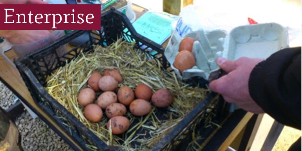 eggsb.jpg