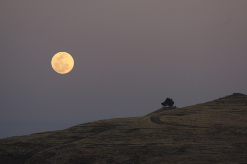 Flickr_-_don_macauley_-_Moon_rise.jpg