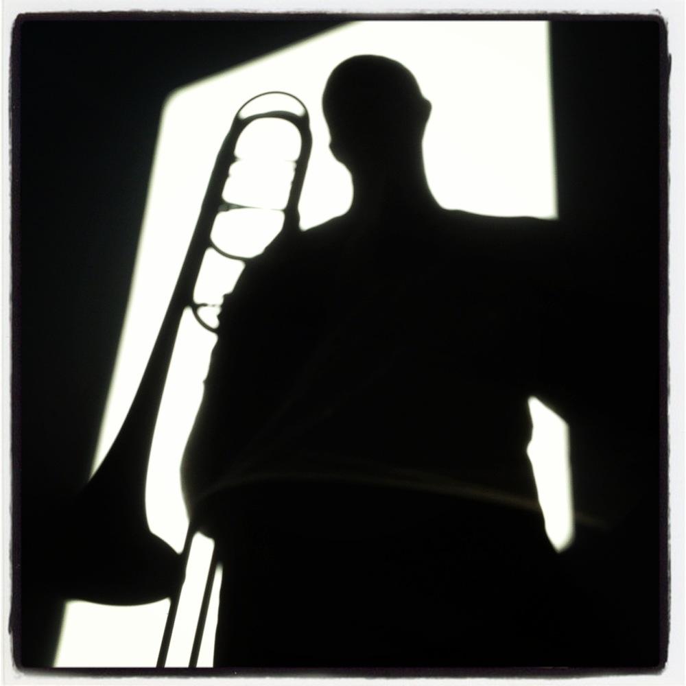 silhouettebone.JPG