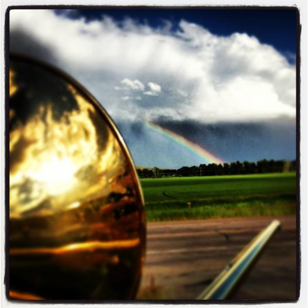 rainbowbone.JPG