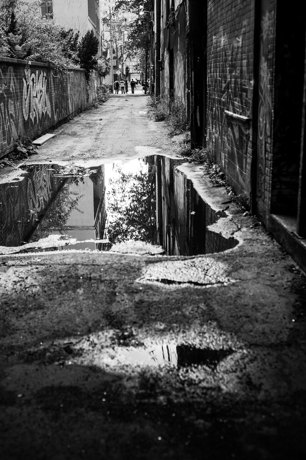 City Street-97.jpg