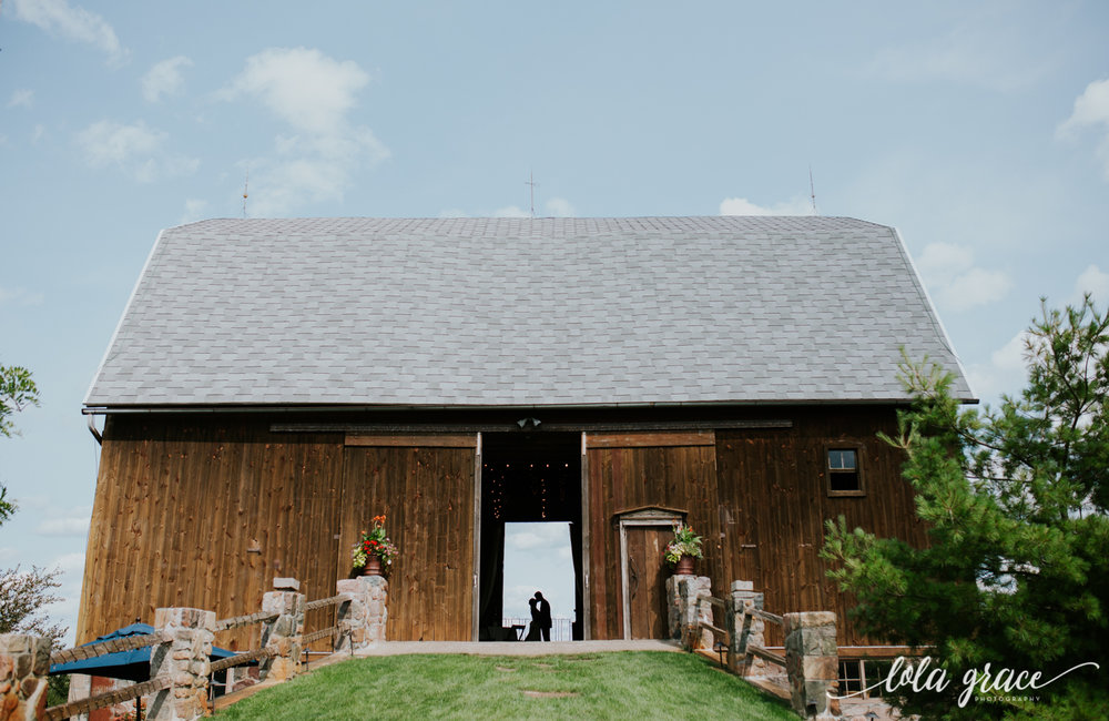 summer-wedding-at-misty-farms-ann-arbor-81.jpg