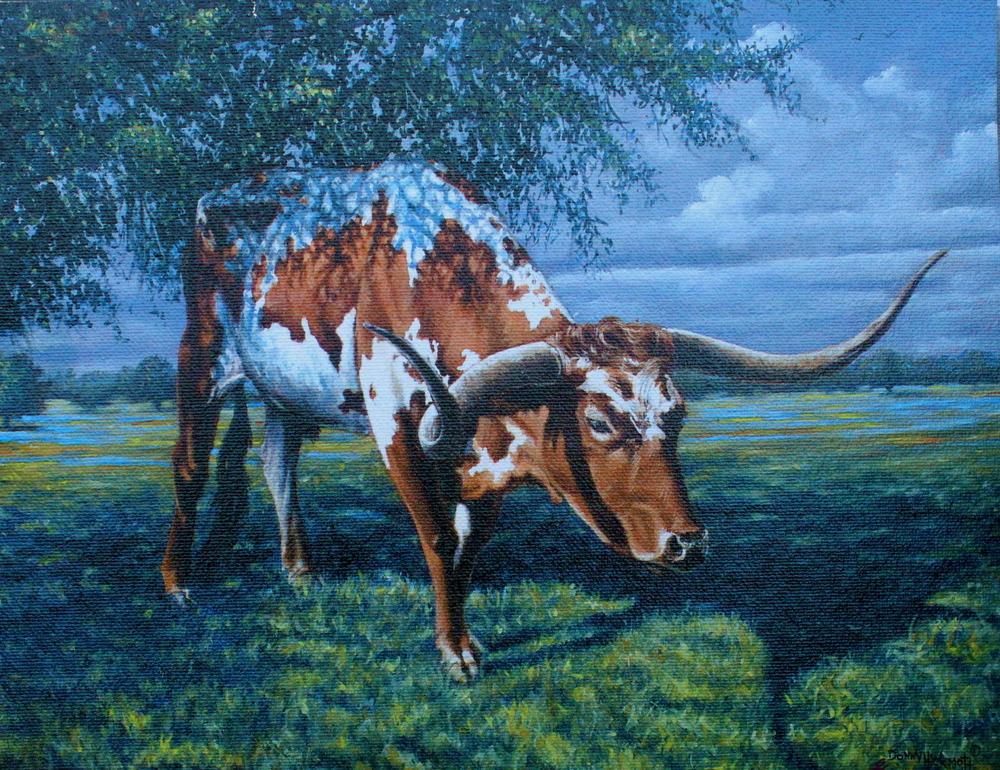 """""""Texas Shade Tree"""""""