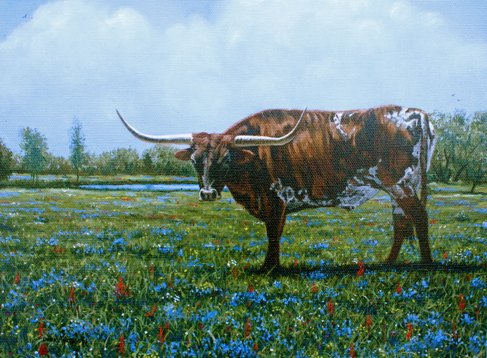 """Texas Blue Bonnet Blue"""