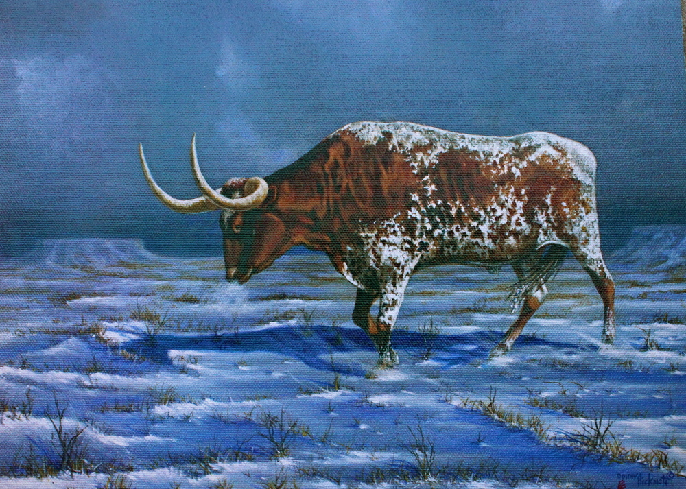 """Texas Blue Norther"""