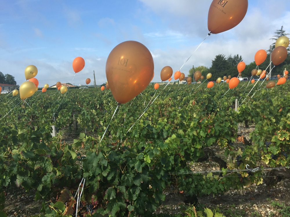 Want to know what it's like? Click here to see a teaser video from the 2015 Medoc Marathon!