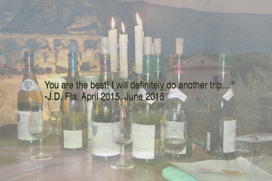 TourFrance-BlissTravels-Quote-Testimonial-4a.png