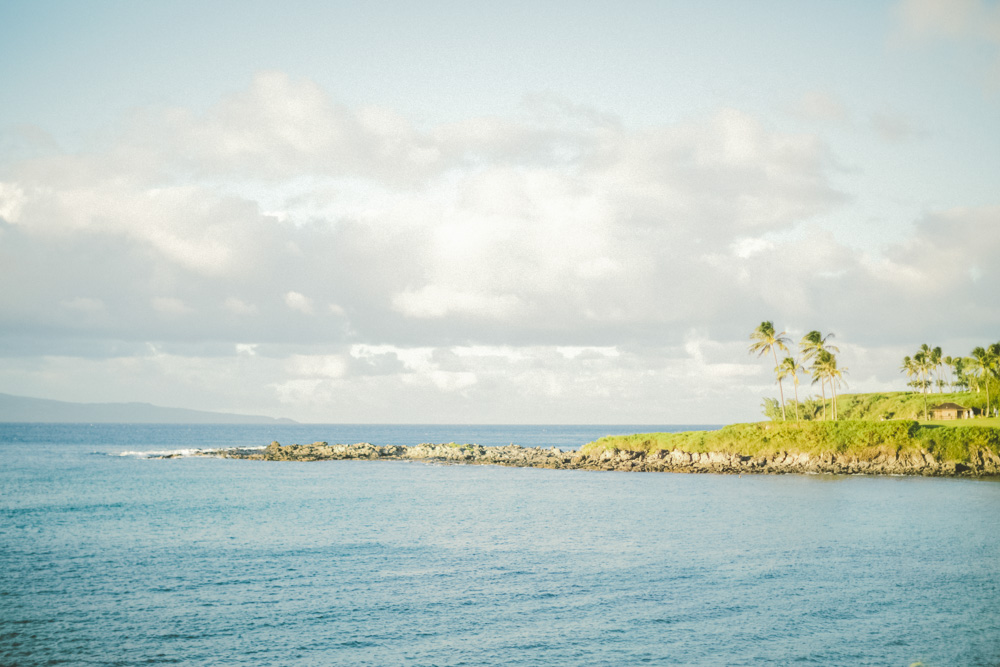 Maui hawaii photographer wedding inspiration_14.jpg
