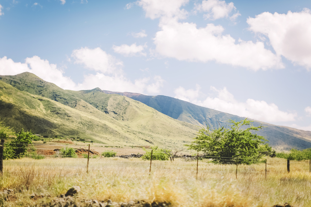 AngieDiaz|MauiVacay157.jpg