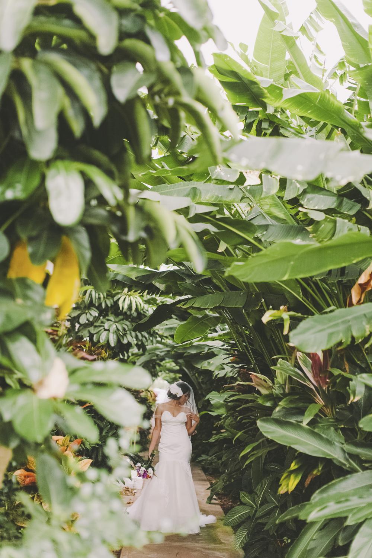 AngieDiaz|MauiWedding224copy.jpg