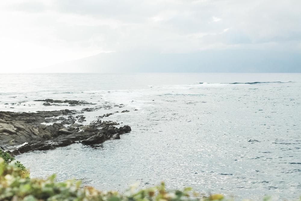 AngieDiaz|MauiWedding648copy.jpg