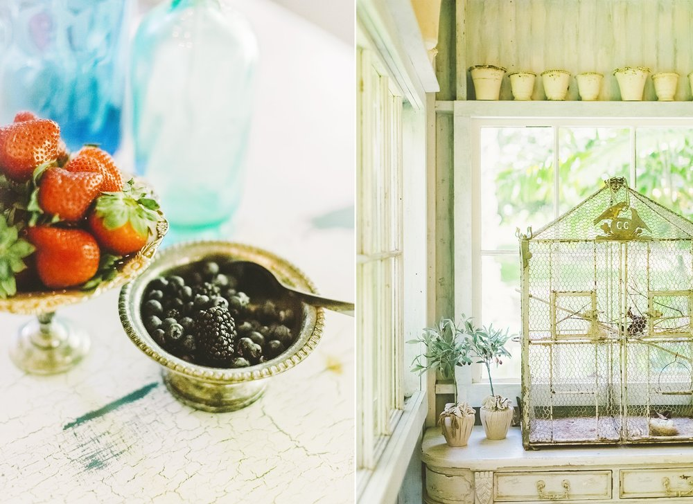 strawberries and bird cage decor