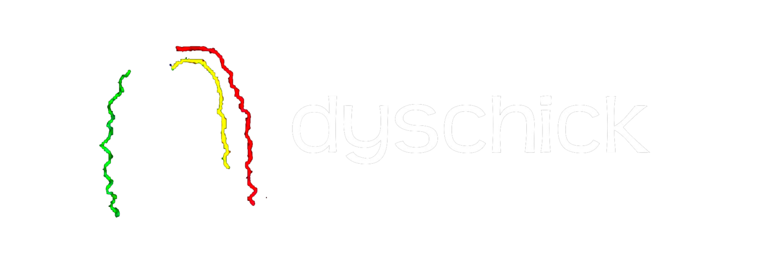 DysChick's Music and Travel Blog