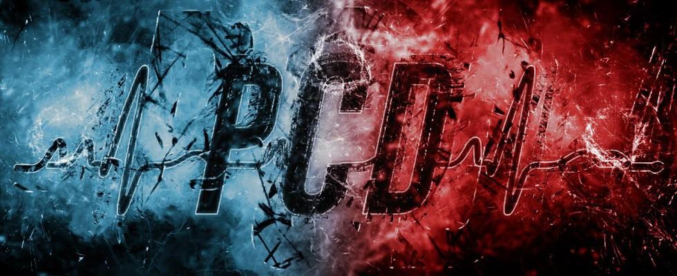 pcd2019teaserflyer-980x400.jpeg