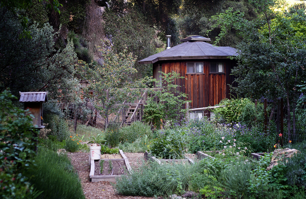 The garden and yurt