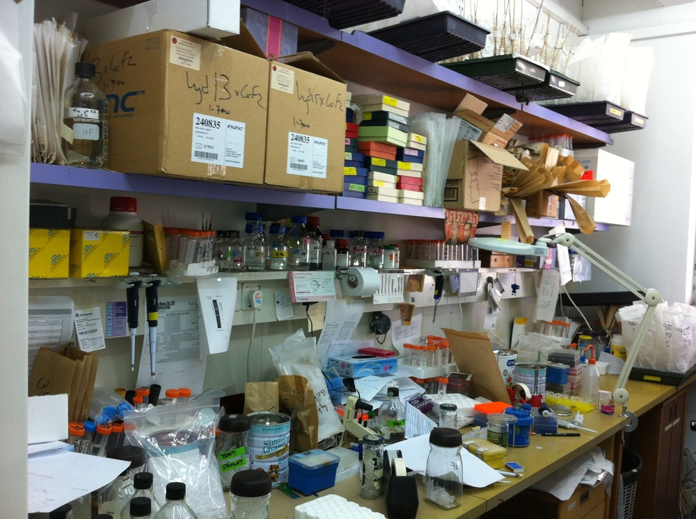 The way your bench is organized directly reflects on your research progress...