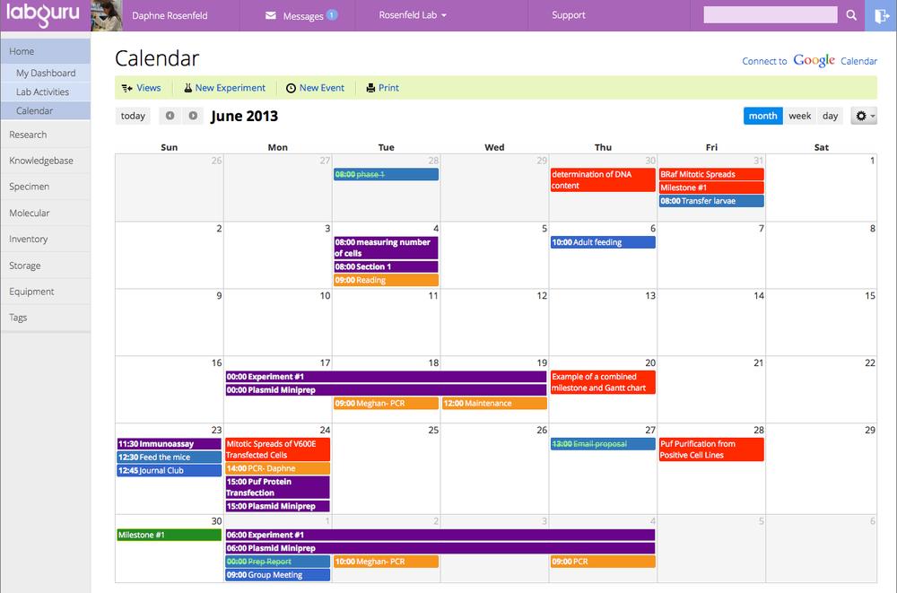 Screenshot - Google Calendar integrated into your Labguru account. [Click to expand]
