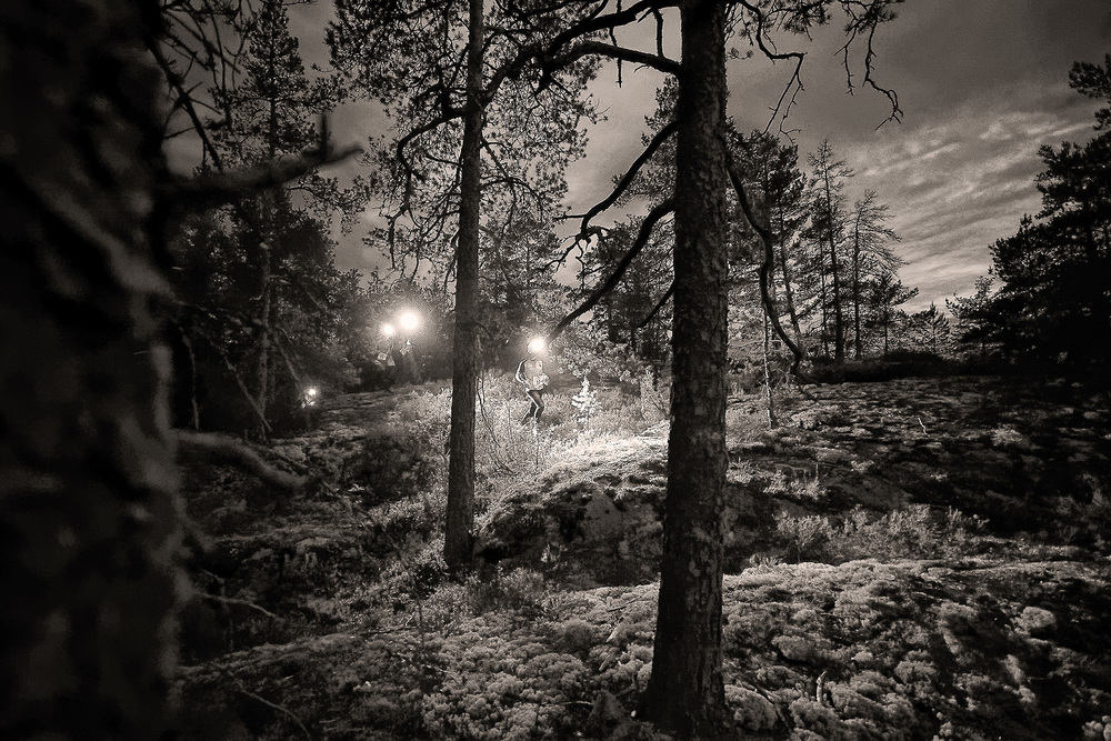 One of my hobbies includes night orienteering in the forest - there I try to avoid trees in the dark!   S    EE MORE night orienteering photos HERE