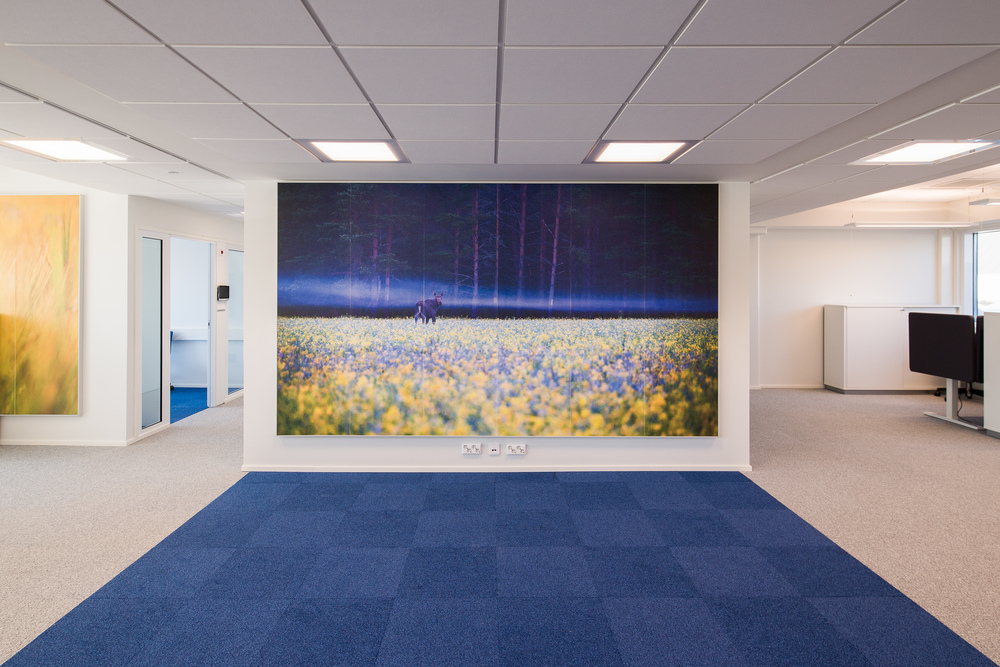 MOOSE IN THE MIST  - 3.6 x 2.1 meters - One of my forty just completed large photo murals for renovated Orion Oyj offices in Turku, Finland.   photo: Nauvo Archipelago , Finland - 4am July 17th 2010