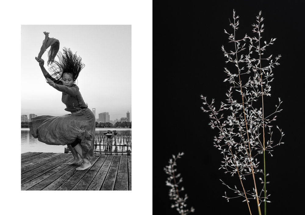 Photo 🅰:   SWEEP   | Bright Lake, Century Park, Pudong, Shanghai, China | dancer: Yun Cheng | October 2014 Photo 🅱:   REEDS   | The Aura River, Turku, Finland | October 2016
