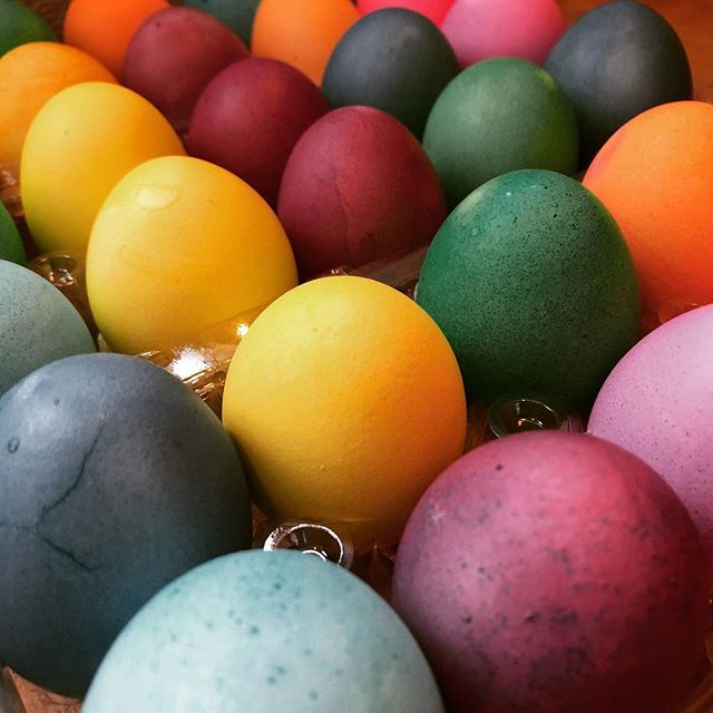 Unlike Christmas and Halloween, the holiday of Easter is still relatively unknown in Japan. So, what is it?  Easter Eggs  speak-eikaiwa.squarespace.com/blog/2019/3/19…  #Easter #EasterEgg #イースター #復活祭 #イースターエッグハント