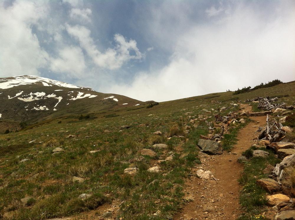 recent run to the roof of Colorado. Mt. Elbert 14,433ft