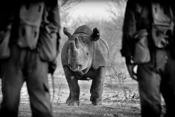 2013 Zimbabwe-014050.jpg