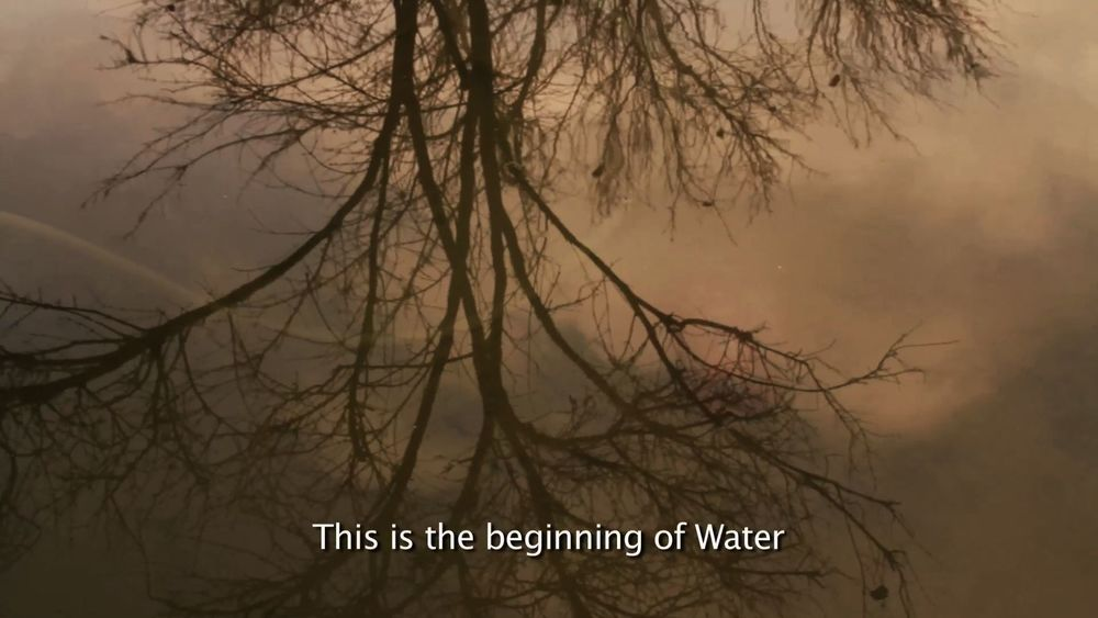In the Beginning - still 1.jpg