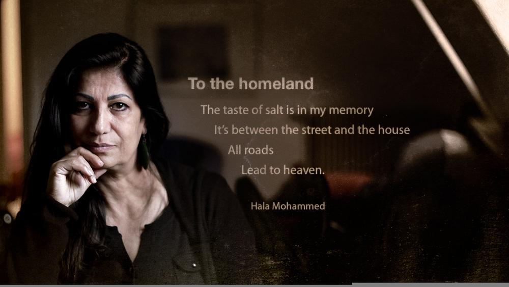 Syrian Poet Hala Mohamad.jpg