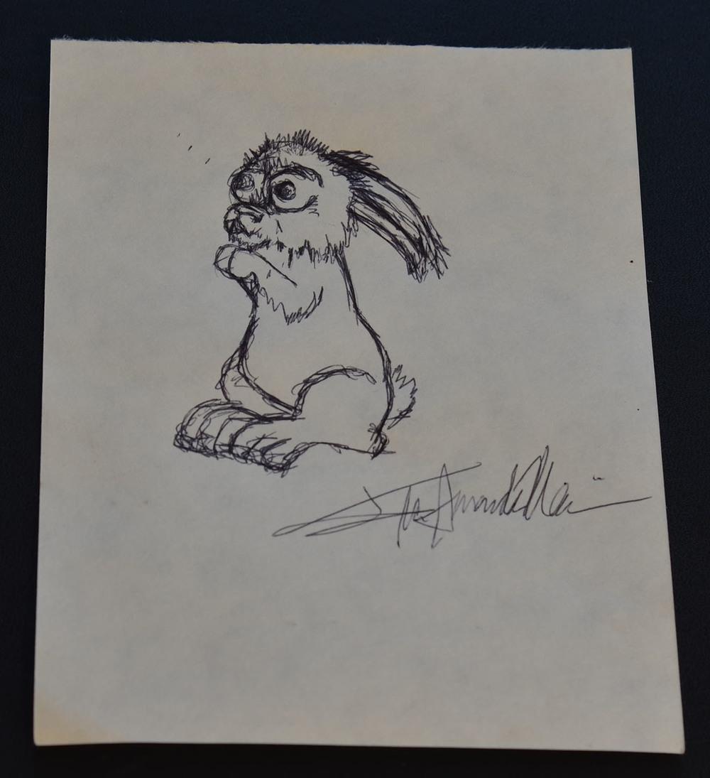 pen bunny1.jpg