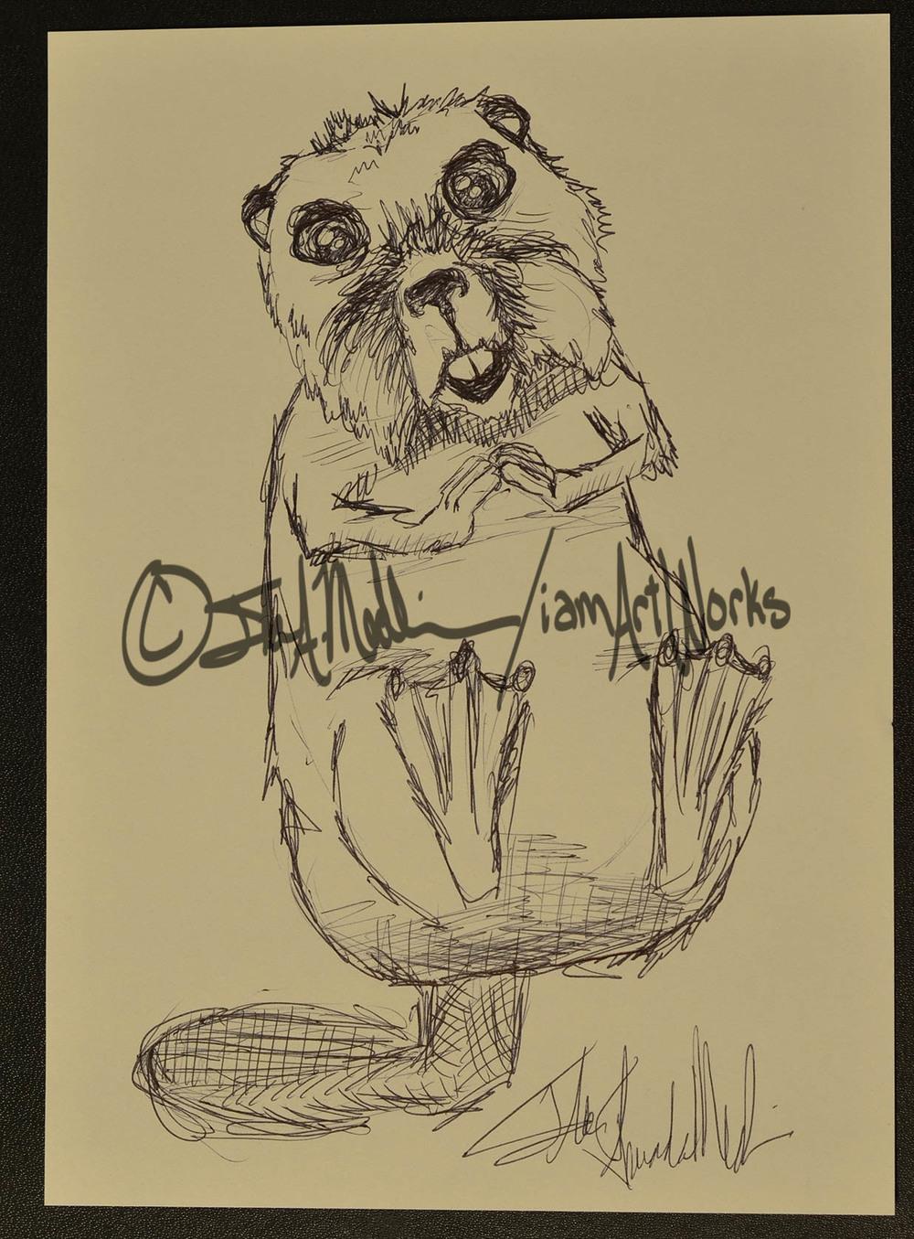 pen beaver.jpg
