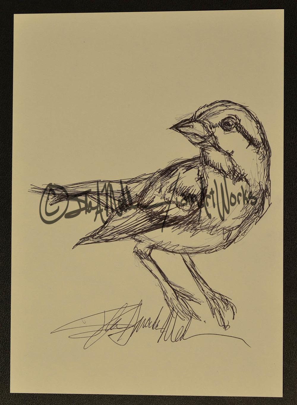 pen sparrow.jpg