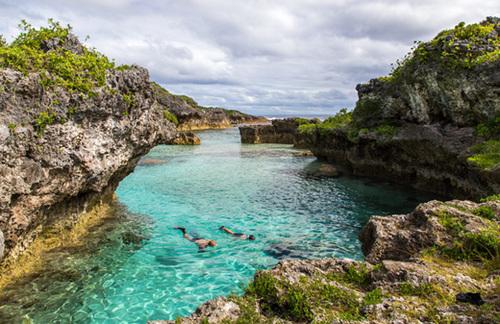 Niue_Limu.jpg