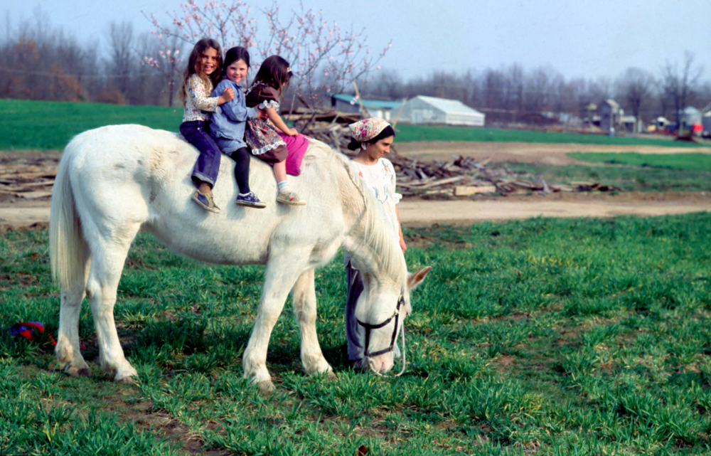 3 girls on horseDF.jpg