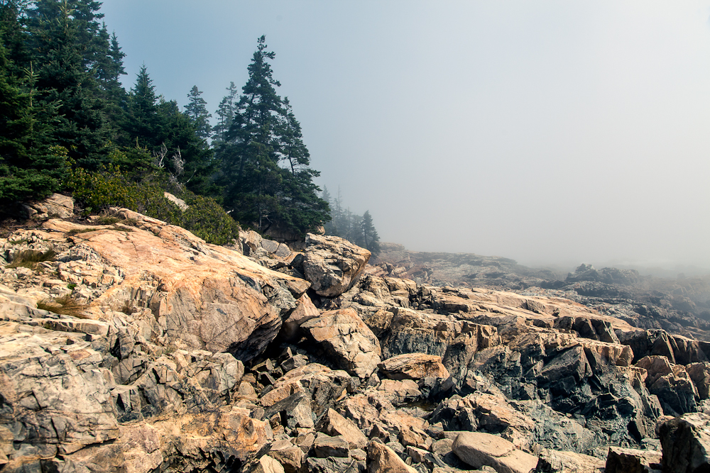 Acadia in the fog: Acadia is notorious for it's foggy summer mornings. It was pretty spectacular how thick the fog was.