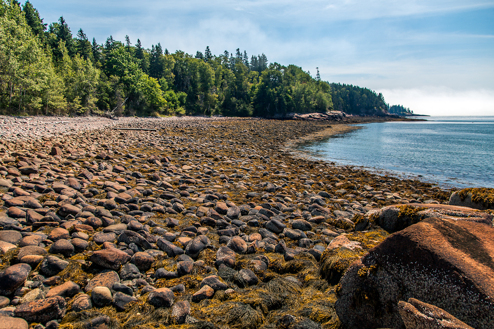 Low tide at Otter Cove:  The rocks have a distinct reddish hue.