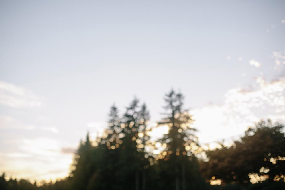 daronjacksonphotography-montgomery-075.jpg