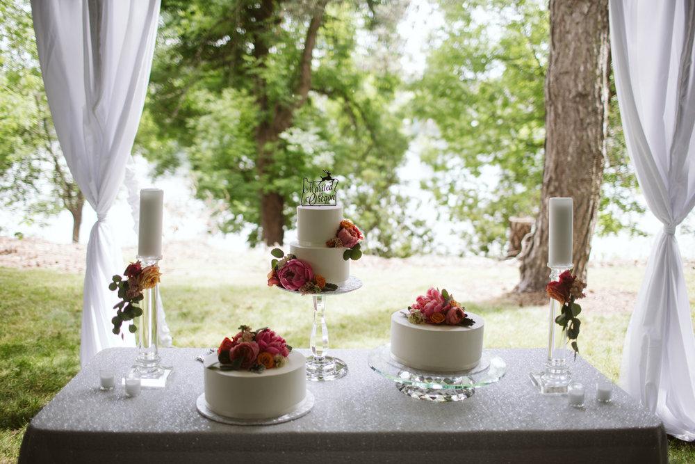 065-daronjackson-gabby-alec-wedding.jpg