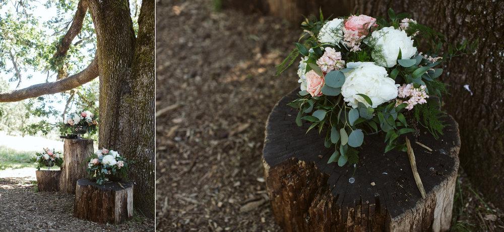 038-daronjackson-rachel-michael-wedding-mtpisgah.jpg